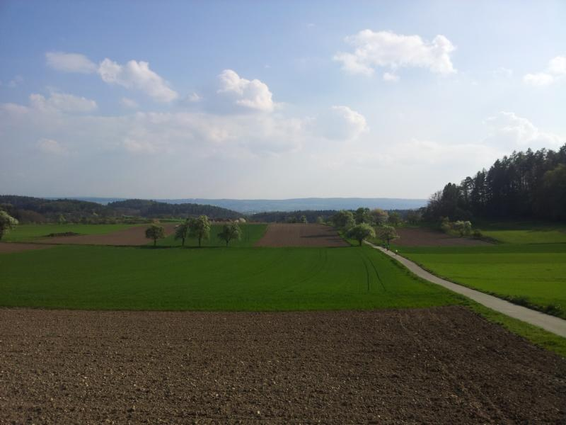 Richtung Allensbach